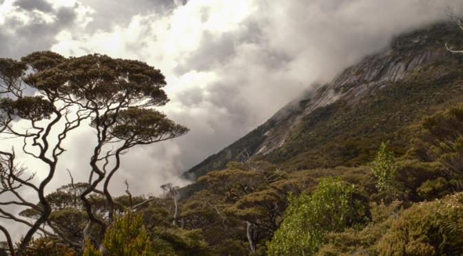 Climbing Mount Kinabalu-4
