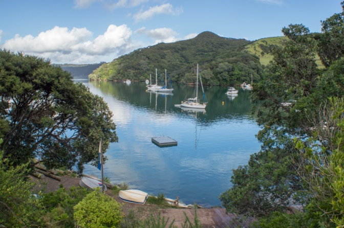 Sailing to Great Barrier Island 5