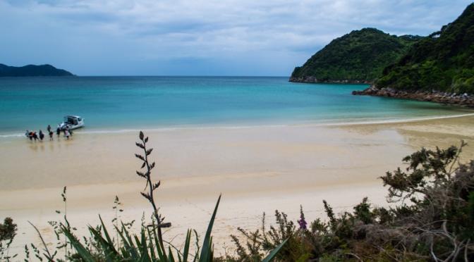 Able Tasman Coastal Track – day 3